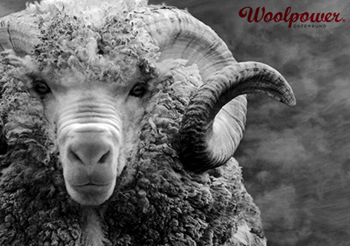 woolpower-of-sweden
