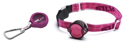 silva rosa bandet
